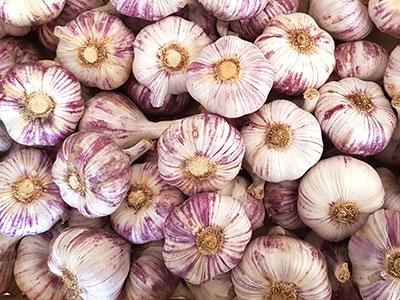 ail violet de la drôme
