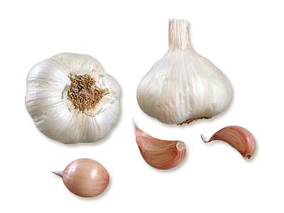 plants ail Flavor AB